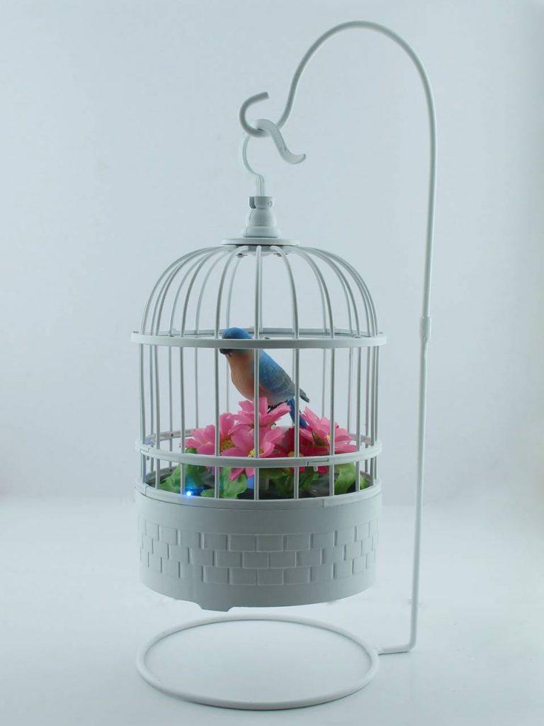 summer items: bird cage